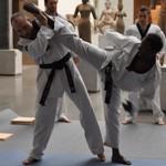 association-do-jeunes-taekwondo-logo